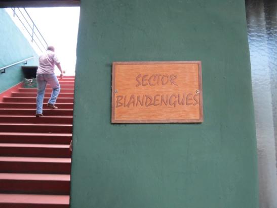 Escalera al cielo de la mano de los Blandengues de Artigas, que en ese mismo momento, festejaban el cameponato de Danubio