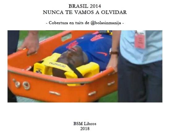 Libro Brasil 2014