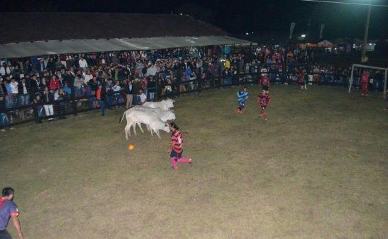 futbol-boi-expo-norte-paraguay-vaca-deporte-torneo